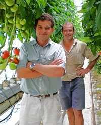 Richard & Anthony Sarks Of Ricardoes Tomatoes & Strawberries